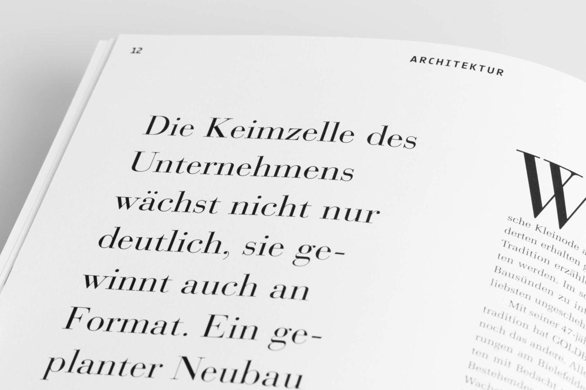 bau|zeit Magazin: Detail Einlauftext